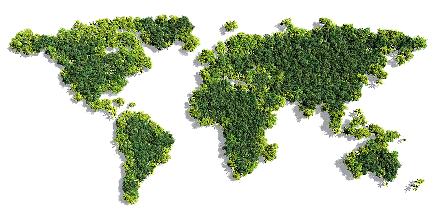 world map green plant